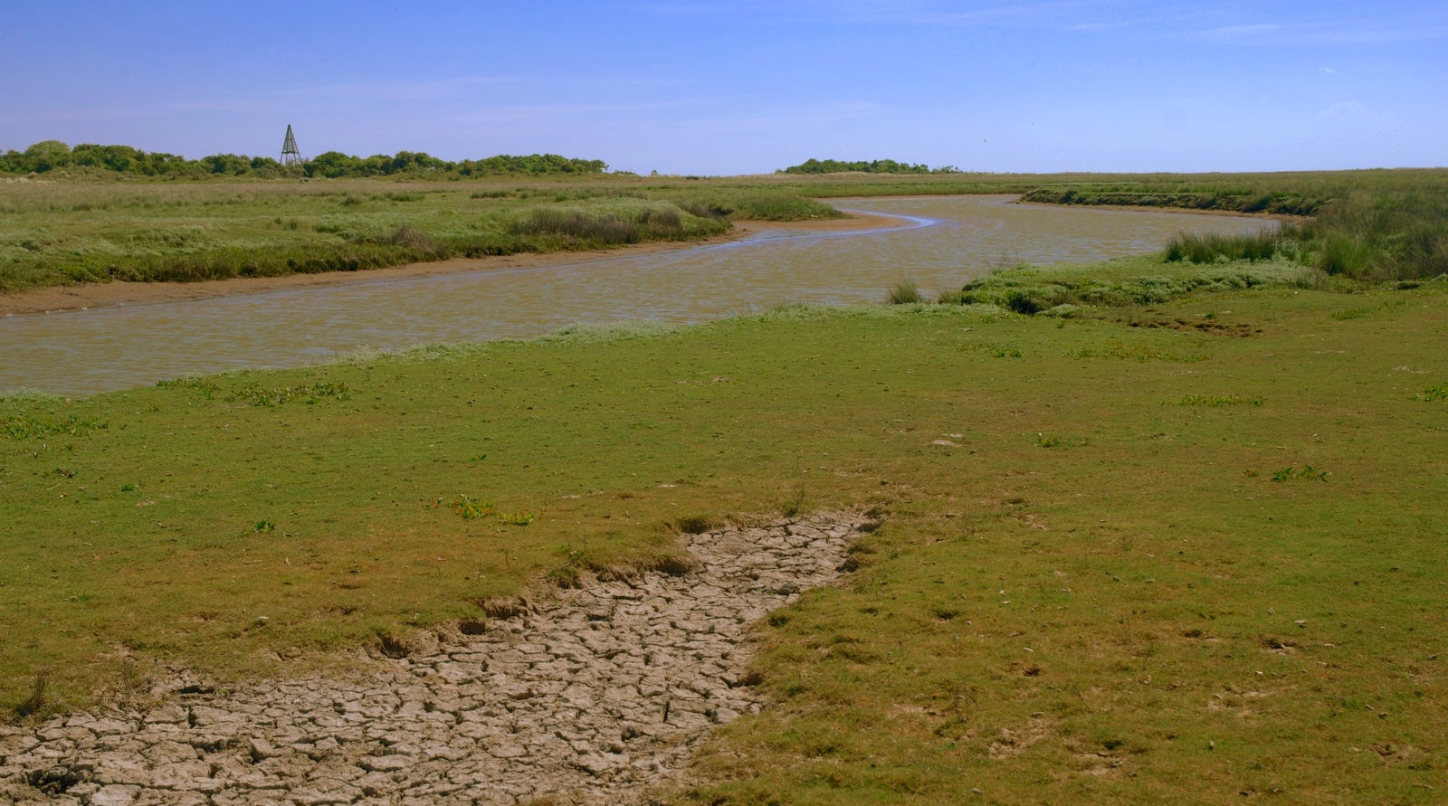 natuur Texel